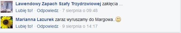 Lazurek, szafa (2)